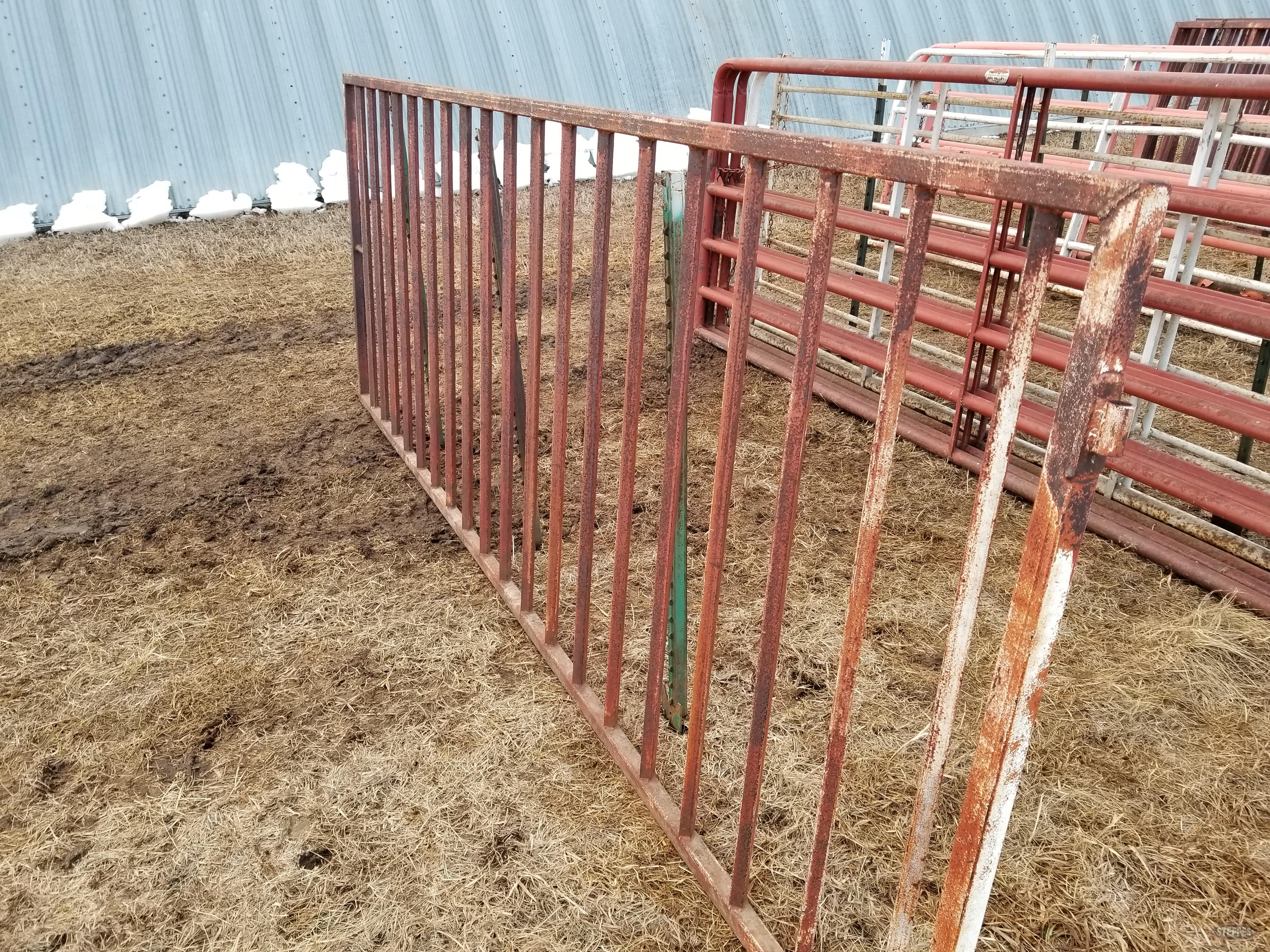(2) 12' cattle gates