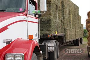 03 Hay & Forage (Litchfield, MN) 6_11_13 143.JPG
