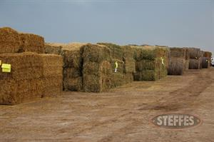 02 Hay & Forage (Litchfield, MN) 6_11_13 197.JPG