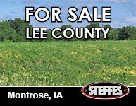 2019_AuctionButton_193x150 - LeeCounty.jpg