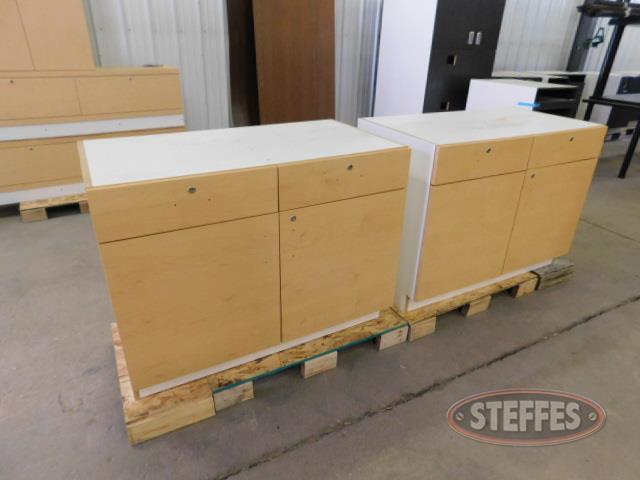 Storage-cabinet-_1.JPG