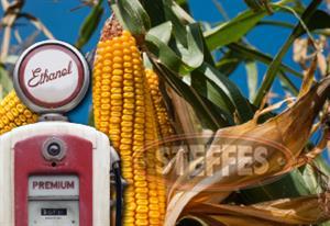 Ethanol_Shares.jpg