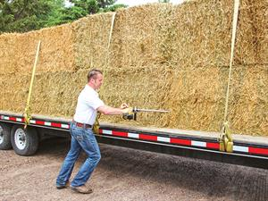 Hay Auction2.jpg