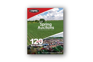 spring auction small graphic.png